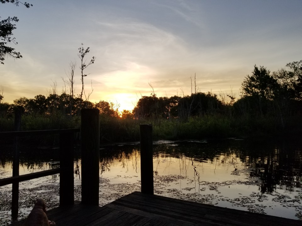 shows a dock at sunset in small town Florida