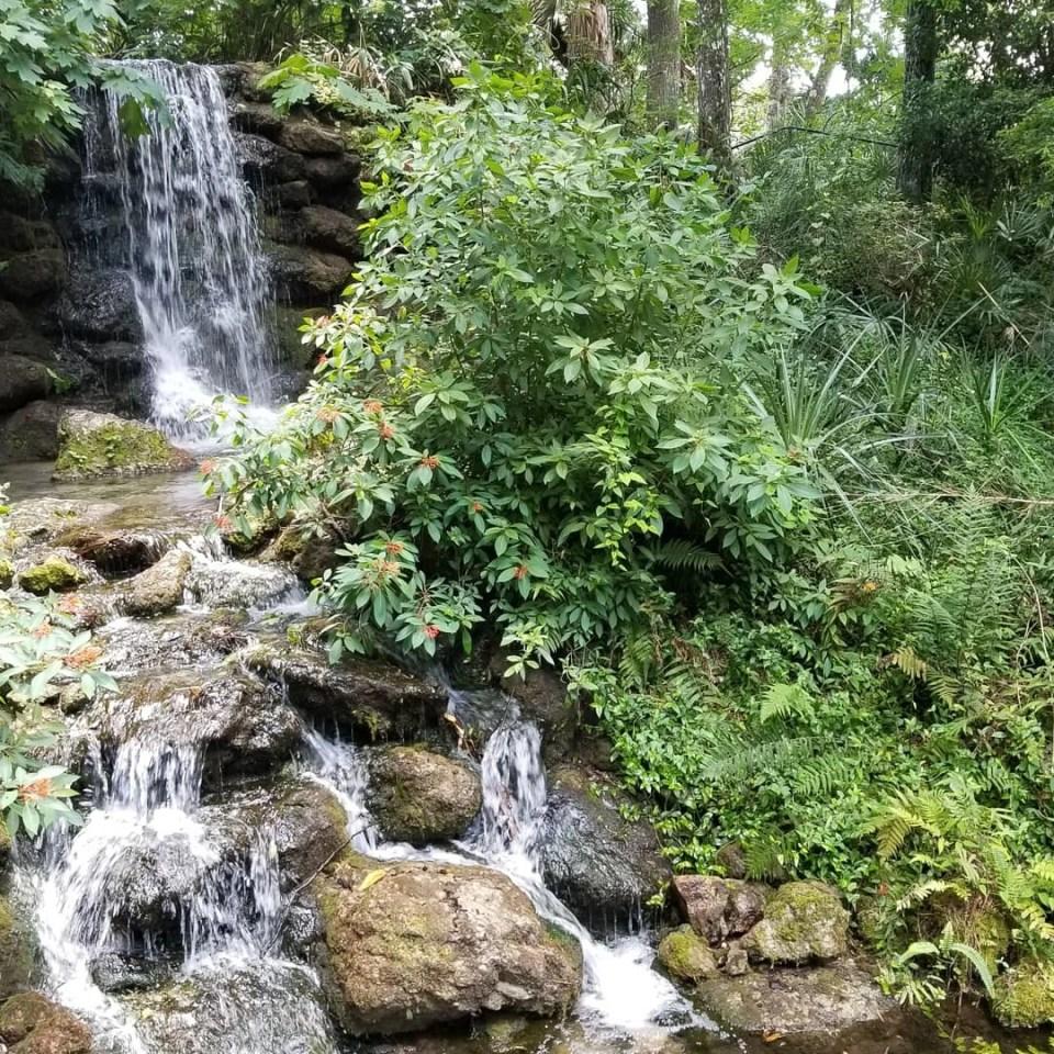 waterfalls at Rainbow Springs State Park