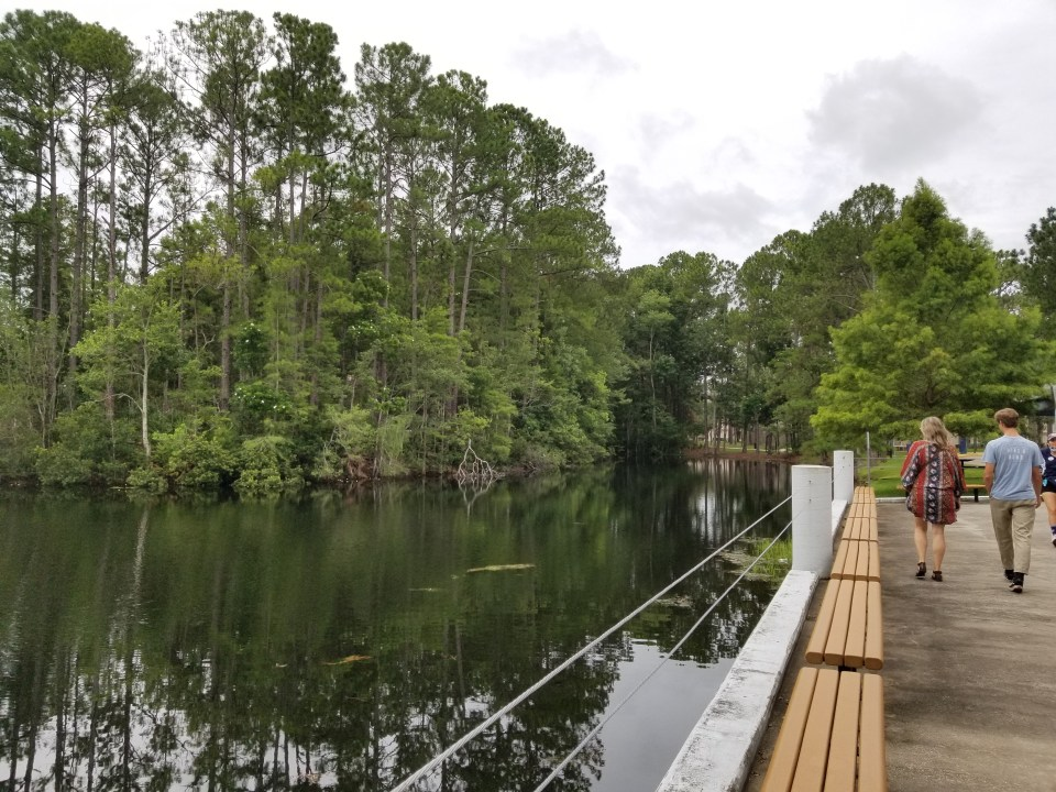 walking along acres of nature at UNF is a thing to do in Jacksonville FL