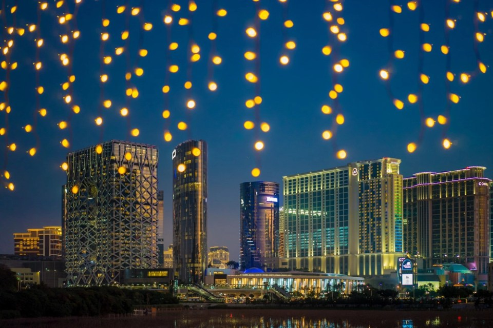 lights hang from fall foliage in Macau