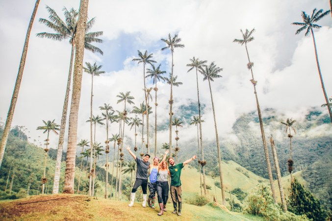 Group of people standing next to the tallest palms trees in the world. Salento Colombia