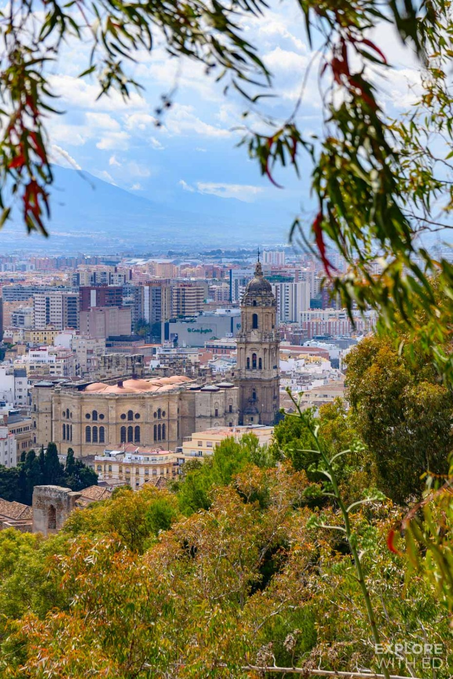 A view of Malaga Cathedral from Gibralfaro