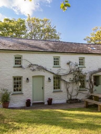 Tyn Y Coed Cottage near Brecon Beacons