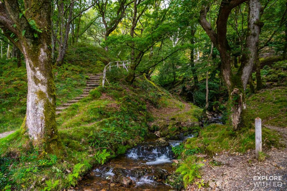 Scenic walk from Tan-Y-Bwlch to Llyn Mair picnic spot