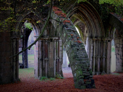 Gothic Architecture Arches