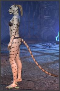Body Markings of the Khajiit - Position 1