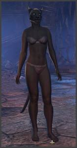 Body Markings of the Khajiit - Position 3