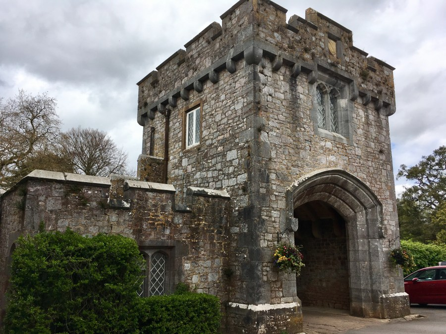 Cream tea and meeting the Countess of Devon at Powderham Castle, pic by exploring exeter 2016