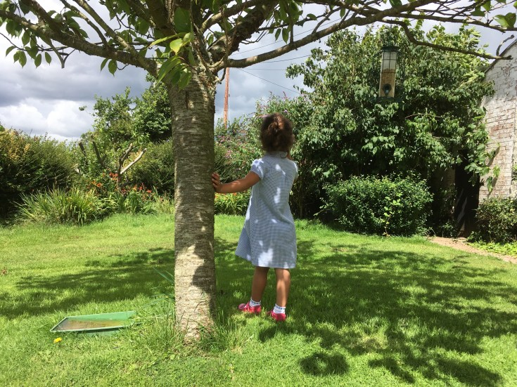 summer holiday fun exploring exeter, by stephanie darkes, 2017