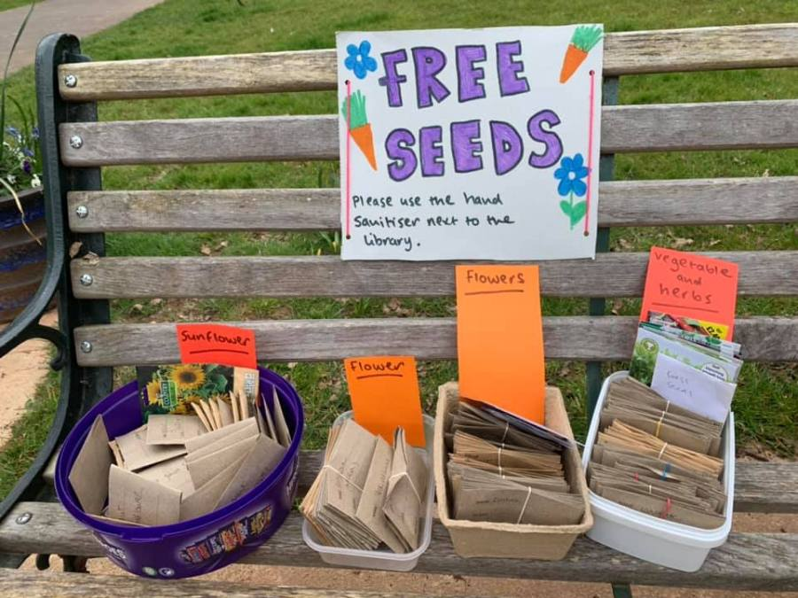 seeds at the Little Free Libraries