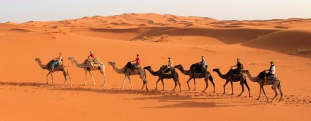 Camel Ride across the Sahara Desert
