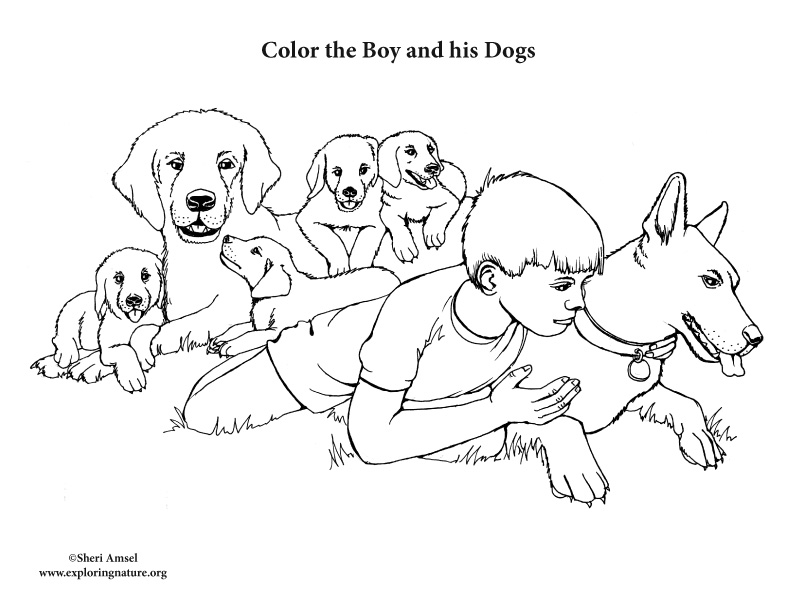 Boy with Pet Dogs Coloring Page