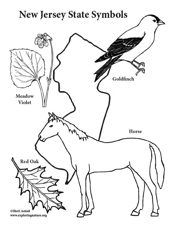 New Jersey State Symbols Coloring Page