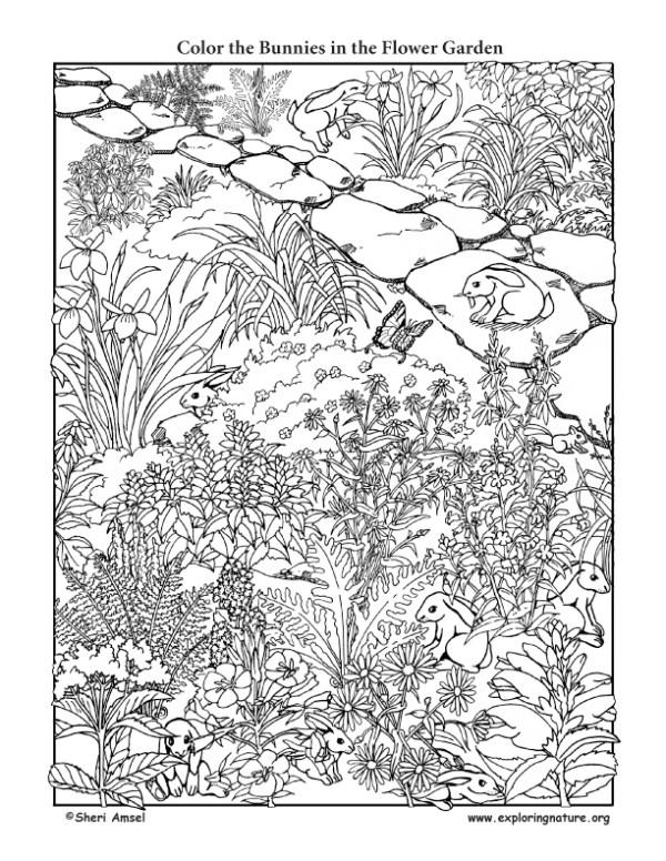 garden coloring page # 30