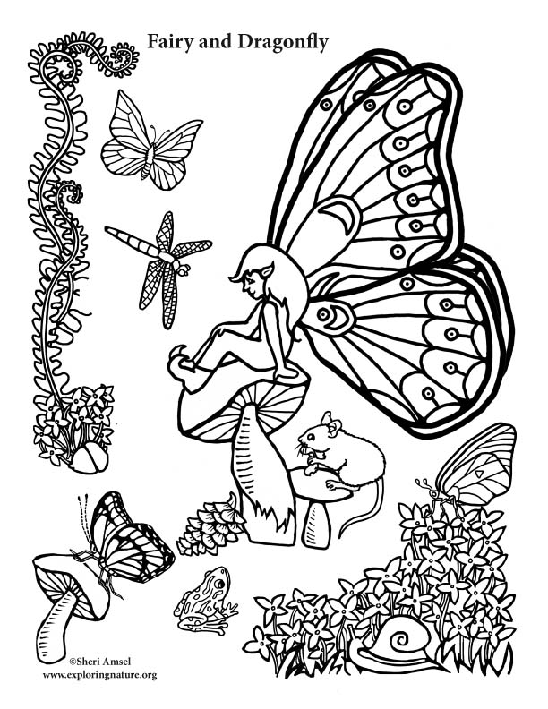 Fairy and Dragonfly Coloring Page