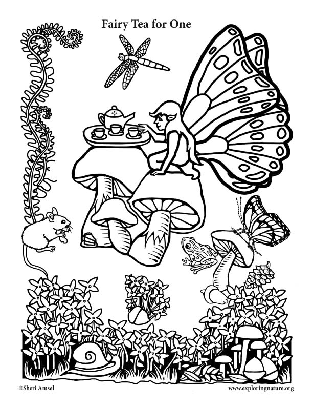 Fairy Tea for One Coloring Page