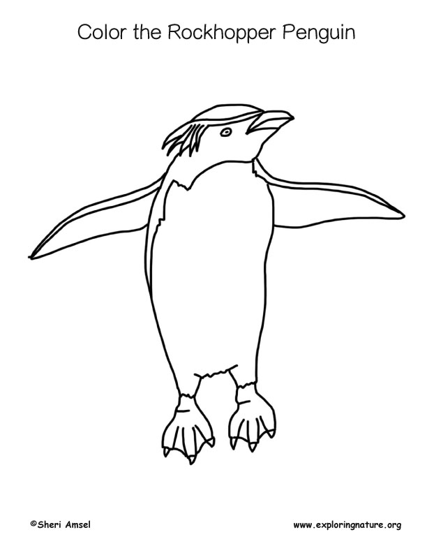 Penguin (Rockhopper) Coloring Page