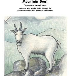 download hi res color diagram mountain goat [ 1275 x 1650 Pixel ]