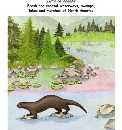download hi res in habitat poster [ 1275 x 1650 Pixel ]