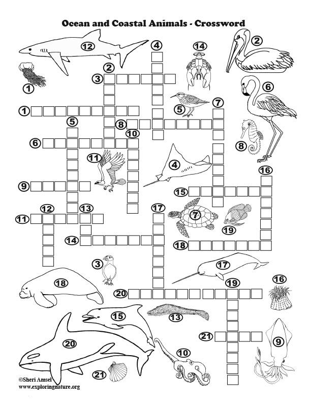 Www exploringnature org food web crossword puzzle