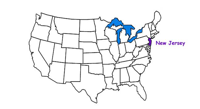 New Jersey Habitats, Mammals, Birds, Amphibians, Reptiles