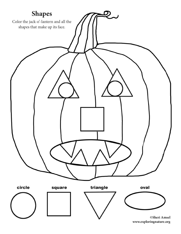 Shapes and Colors Activity