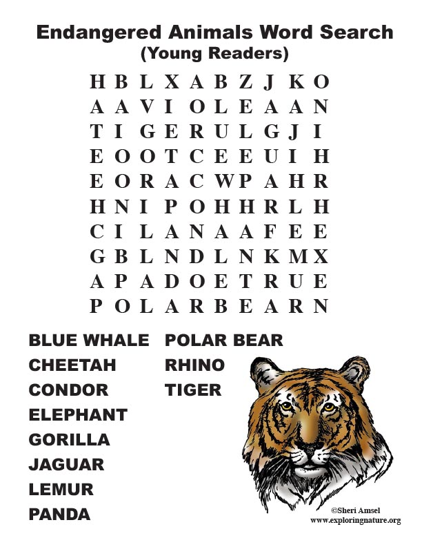 Endangered Animal Word Search (Primary Grades)