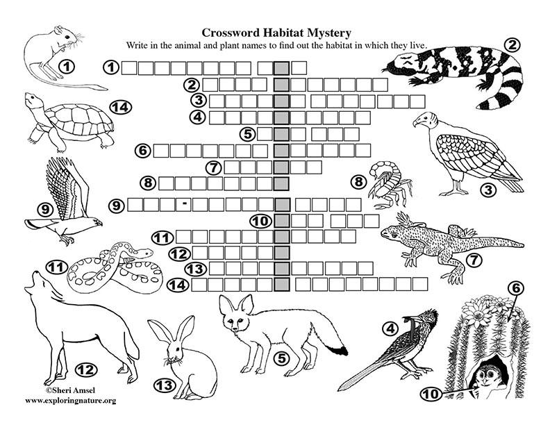 Habitat Mystery Crossword Puzzle (Desert)