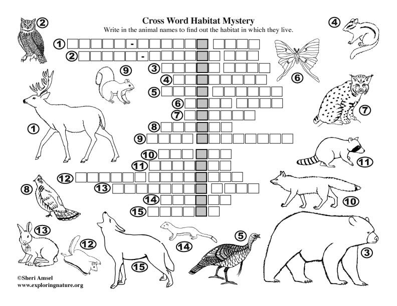 Habitat Mystery Crossword Puzzle (Deciduous Forest)