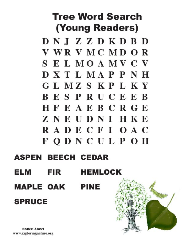 Tree Word Search (Primary)