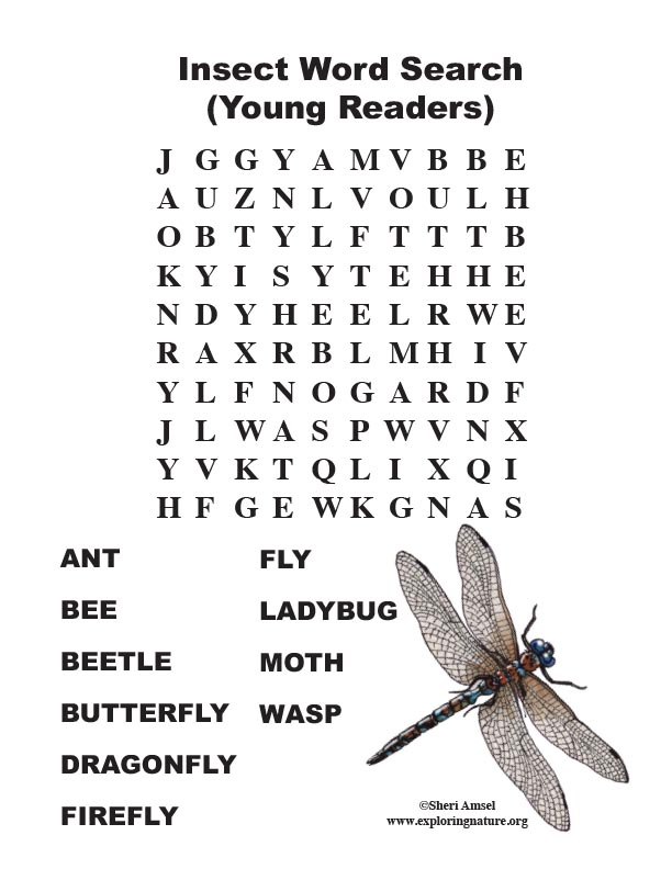 Insect Word Search (Primary)