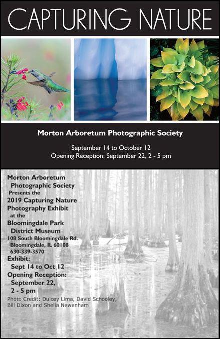 Capturing Nature Postcard Invitation