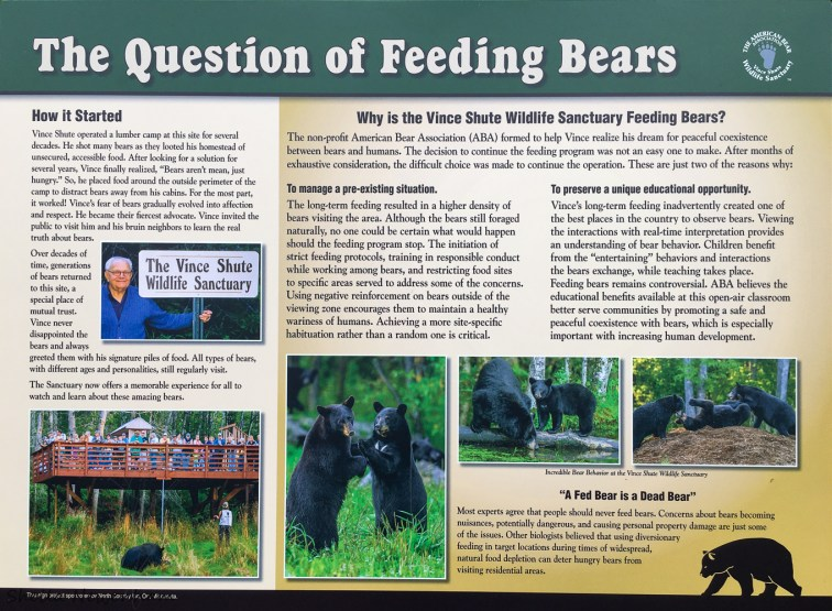 The question fo feeding bears sign
