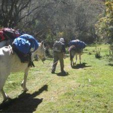 transporte trekking