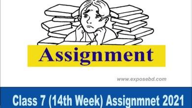 class-7-14th-week-assignmen