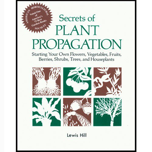 Plant Propagation Techniques - Exposing The Truth