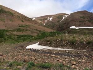 norilsk tundra