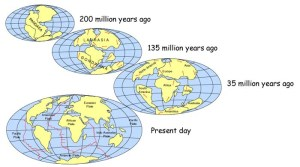 Earth plate history diagram