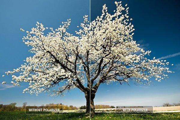 top 10 digital photography