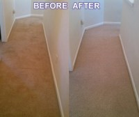 Carpet Cleaning Virginia | Express Carpet Cleaning