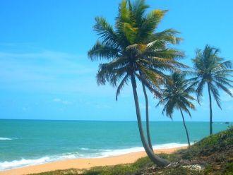 brasil playa