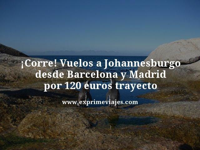 ¡CORRE! VUELOS A JOHANNESBURGO POR 120EUROS TRAYECTO DESDE ESPAÑA