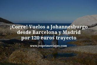 tarifa-error--Vuelos-a-Johannesburgo-desde-Barcelona-y-Madrid-por-120-euros-trayecto