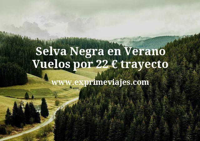 Selva Negra en Verano Vuelos por 22 euros trayecto