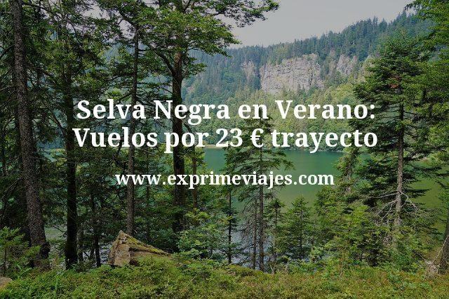 Selva Negra en Verano: Vuelos por 23euros trayecto