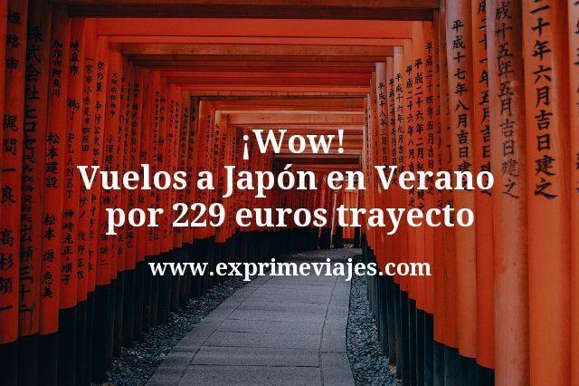 ¡Wow! Vuelos a Japón en Verano por 229euros trayecto