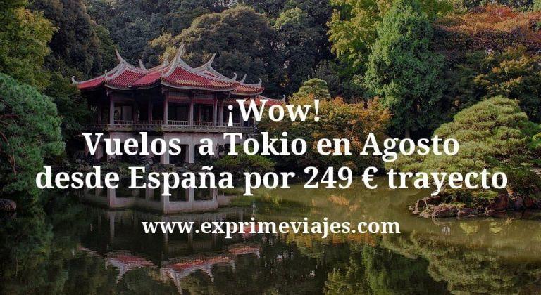 ¡Wow! Vuelos  a Tokio en Agosto desde España por 249€ trayecto