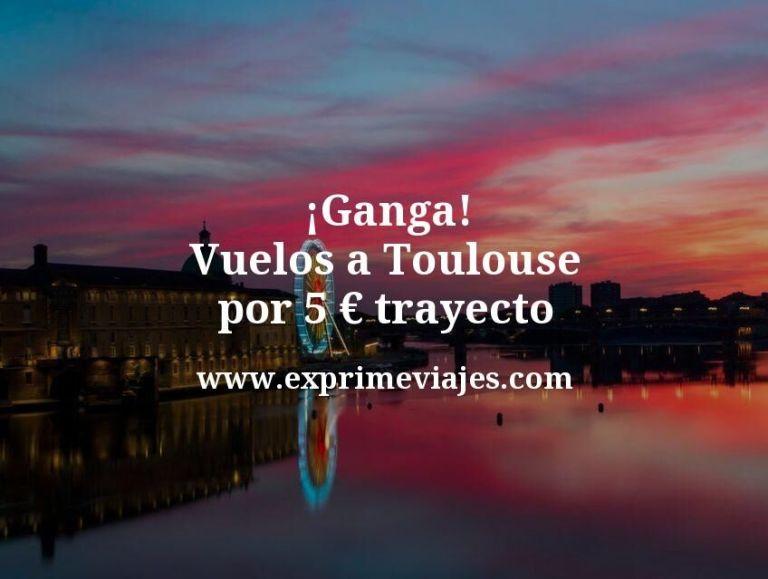 ¡Ganga! Vuelos a Toulouse por 5euros trayecto