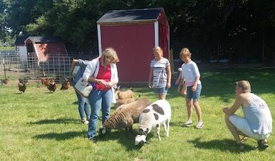 farm to school toolkit pilot livestock