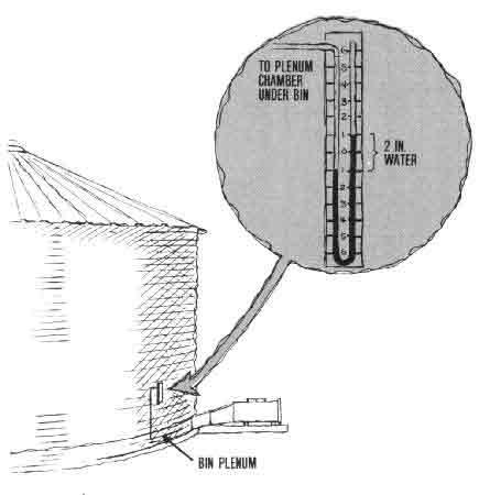 grain kernel diagram car wiring symbols leg all data ae 106 rice